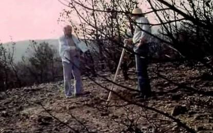 ΚΙΝΗΜΑΤΟΓΡΑΦΙΚΗ ΛΕΣΧΗ SOLARIS-ΚΑΛΟΚΑΙΡΙΝΕΣ ΝΥΧΤΕΣ ΚΩΜΩΔΙΑΣ ΑΠΟ ΠΑΝΕ ΓΙΑ ΤΗ ΧΑΒΟΥΖΑ
